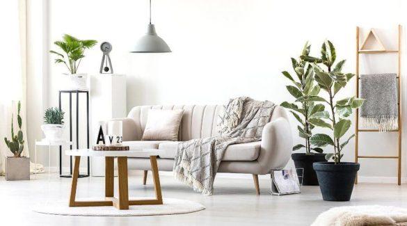 Bright living room interior with elegant, beige couch, ficus plants and round coffee table - 6 Tips voor het inrichten van de woonkamer