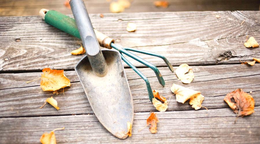 Tuingereedschap en herfst bladeren op een tafel - 8 Tips om je tuin winterklaar te maken