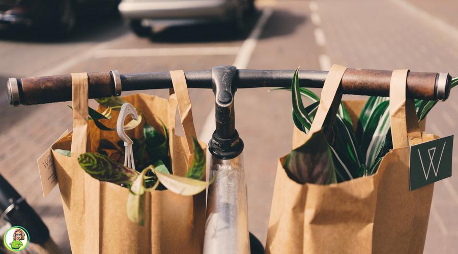 6 manieren van groen leven die de moeite waard zijn