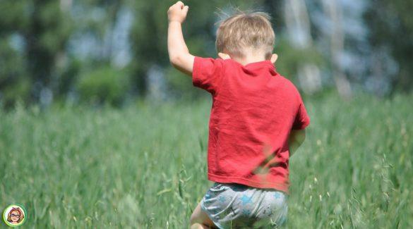 Peuter met rood shirt en korte broek spelend in hoog gras