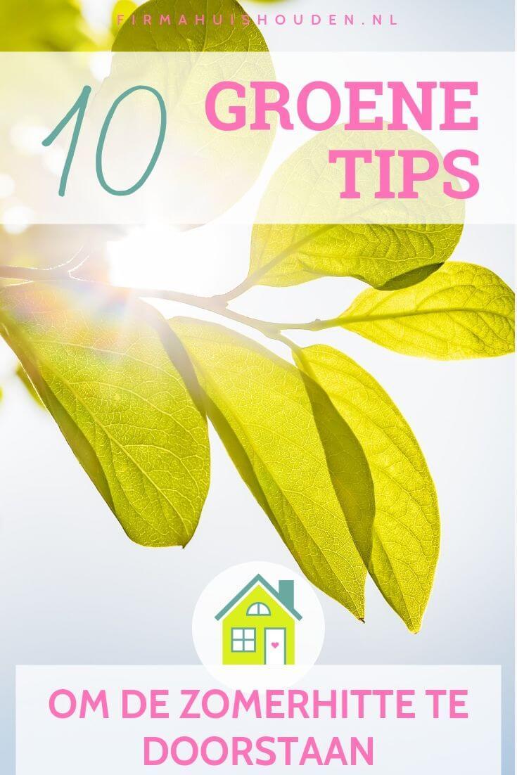 Felle zon schijnt door groene bladeren - Groene tips