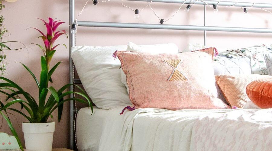 Bromelia: 5 Redenen om de ideale huisgenoot in huis te halen