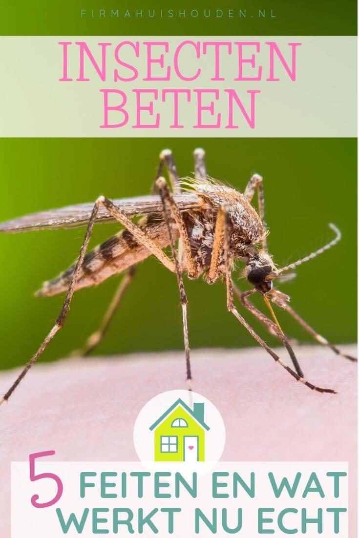 5 Feiten over insectenbeten