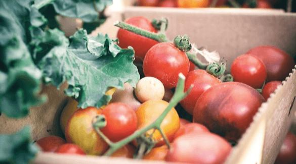 Doos met oogst, groente - SLAKKEN, GROENTEVLIEGJES, BLADLUIZEN; ZO VERPESTEN ZE JE OOGST NIET