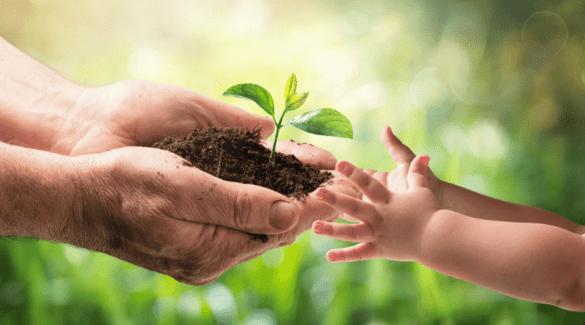 7 Manieren waarop ik mijn kinderen milieuvriendelijk opvoed