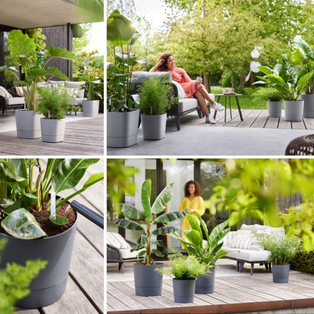 haal de natuur in huis
